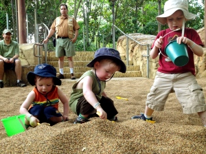 Animal Kingdom - Sand Play
